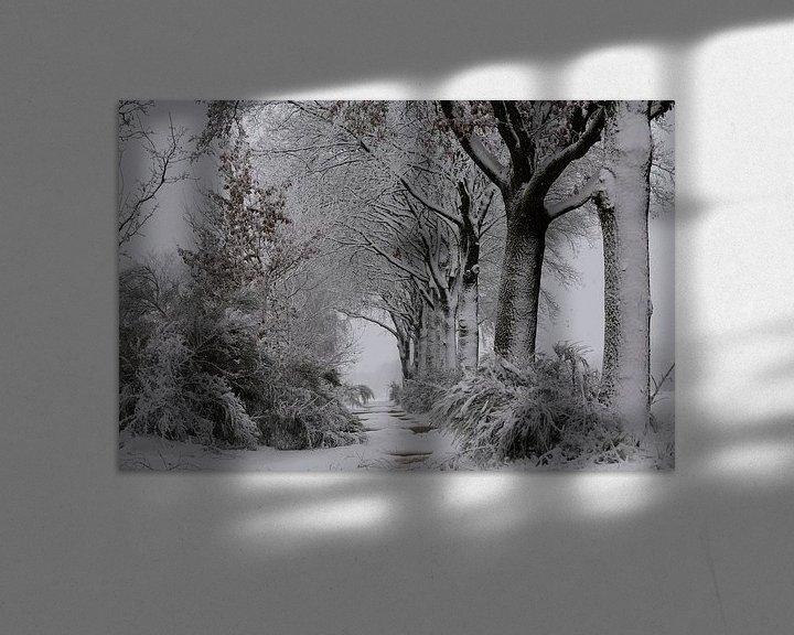 Sfeerimpressie: Sneeuw, wind en kou in de polder. van Paul Wendels