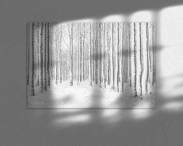 Winterwald schwarzweiß von Margreet Piek