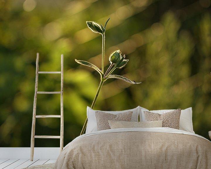 Sfeerimpressie behang: garden flower van Erich Werner