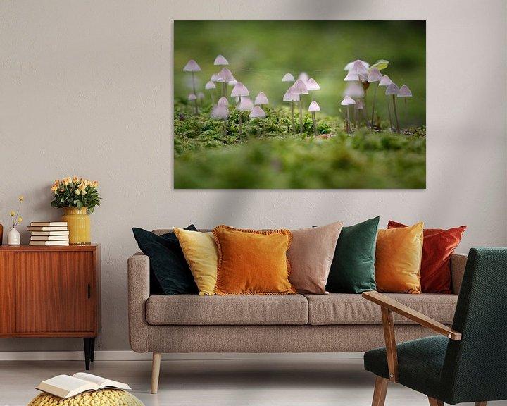 Sfeerimpressie: Small mushroom lights van Erich Werner