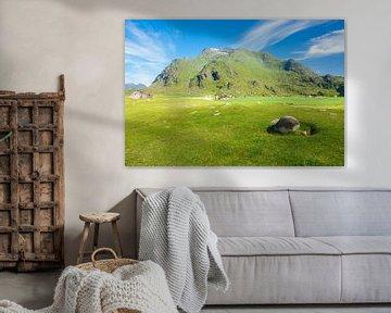 Berge auf den Lofoten in Norwegen von Rico Ködder