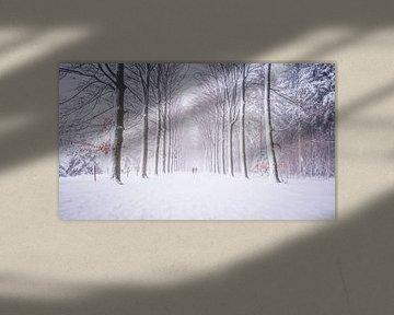 Code Oranje van Sander Peters Fotografie