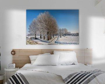 Winter landschap  van Bram van Broekhoven