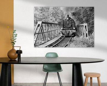 Steam locomotive van Heinz Grates