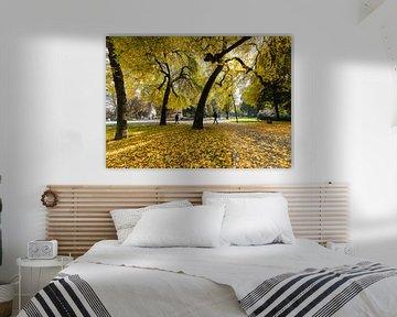 Herfstkleuren in Park Valkenberg Breda van JPWFoto