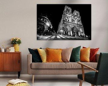 De Notre Dame in de spotlights von Emil Golshani