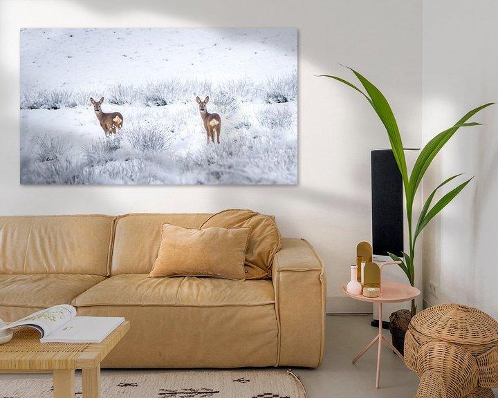 Sfeerimpressie: Reeën in sneeuwlandschap van Martzen Fotografie