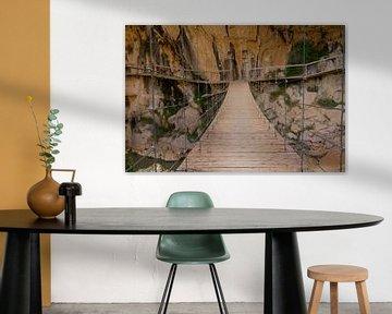 Suspension Bridge van Cornelis (Cees) Cornelissen
