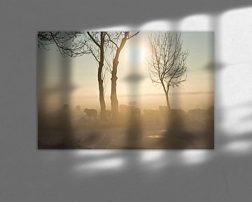 Schapen in de ochtendmist van Fotografia PB