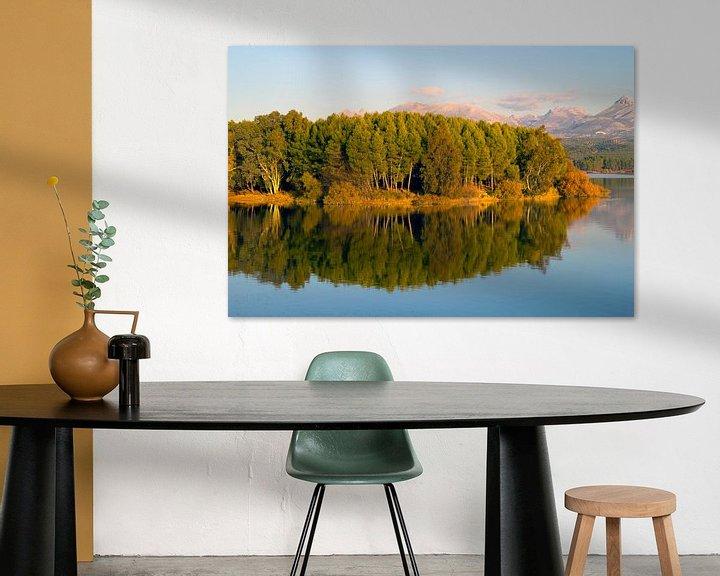 Sfeerimpressie: Forest Reflection van Cornelis (Cees) Cornelissen
