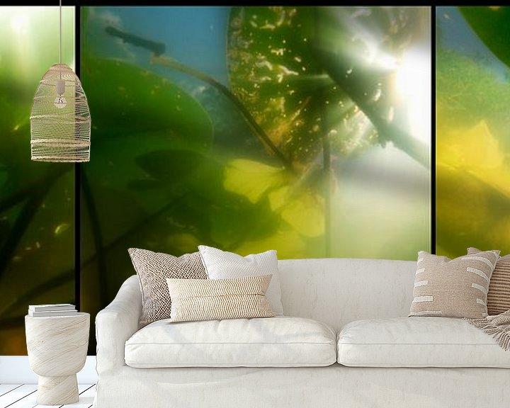 Sfeerimpressie behang: Waterlelies van Marlon Mendonça Dias