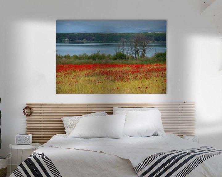 Sfeerimpressie: Poppies Lake van Cornelis (Cees) Cornelissen