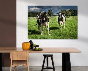 Schwarz-Weiß gefleckte Kühe von Gijs Rijsdijk