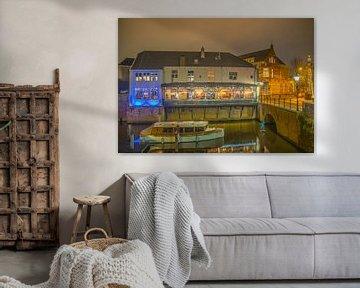 De Binnendieze in Den Bosch van Freddie de Roeck
