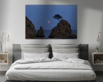 Mond über Tossa von Yvonne van Leeuwen