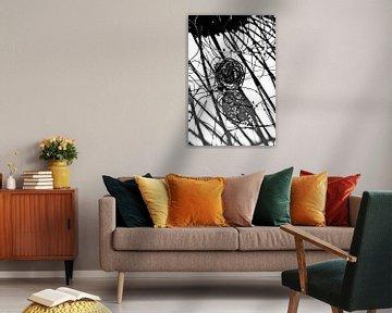 Knäuel schwarz weiß von angelique van Riet