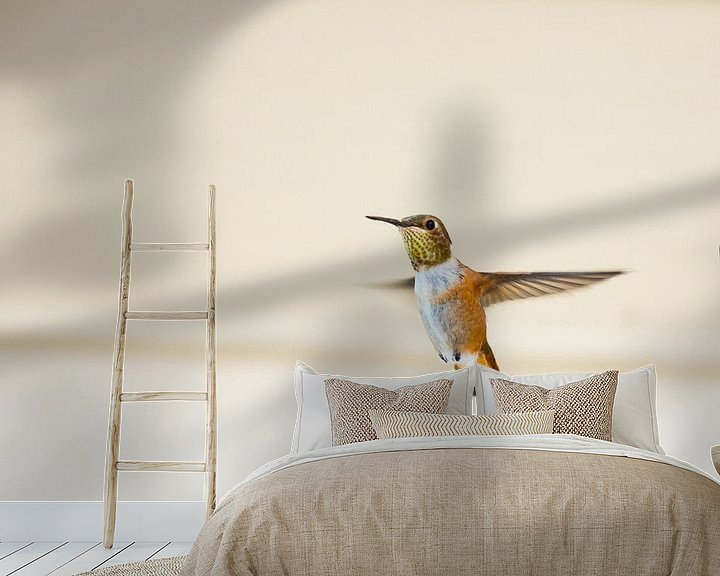 Sfeerimpressie behang: Canadese Kolibrie van Emile Kaihatu