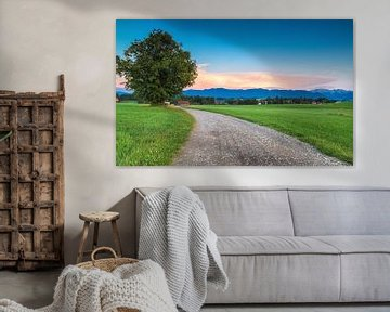 Country road in Bavaria van Ilya Korzelius