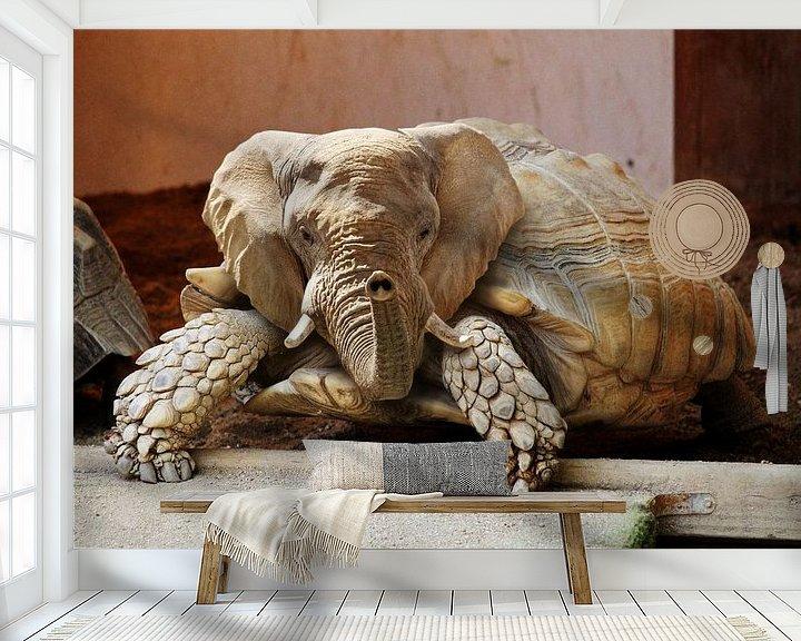 Sfeerimpressie behang: Olifant Schildpad van Sarah Richter