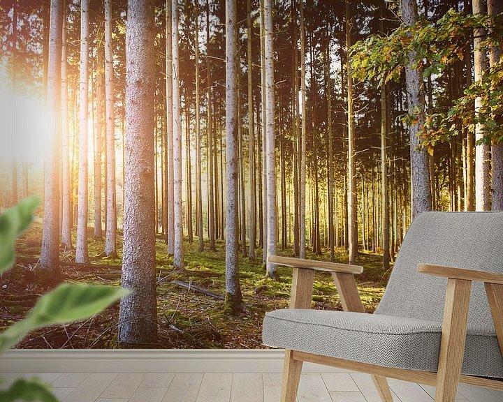 Sfeerimpressie behang: Herfstkleuren in het bos van Nick van Dijk