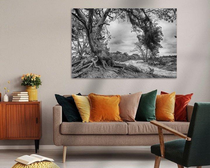 Sfeerimpressie: Natuurgebied Soester Duinen Soest zwartwit van Watze D. de Haan