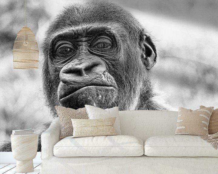 Beispiel fototapete: Wer ist der Affe? von Ines van Megen-Thijssen