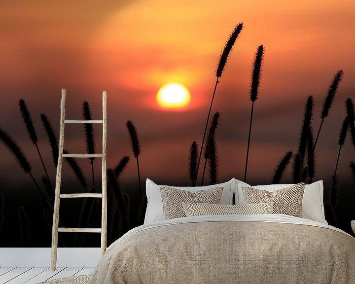 Beispiel fototapete: Zonsondergang von Ludo Verhoeven