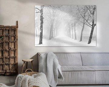 Schneeschauer von Ton van Buuren
