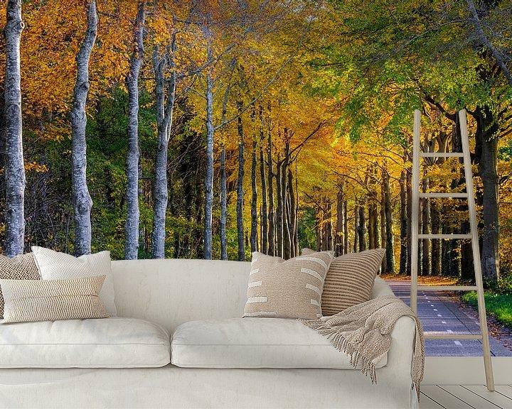 Sfeerimpressie behang: Het goud van de herfst van Tvurk Photography