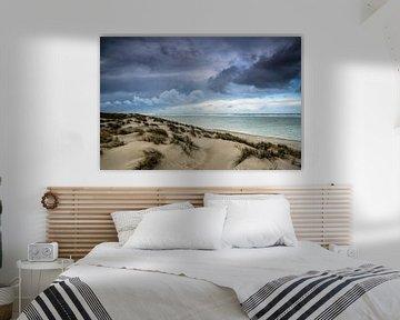 Hollandse duinen | Texel van Ricardo Bouman