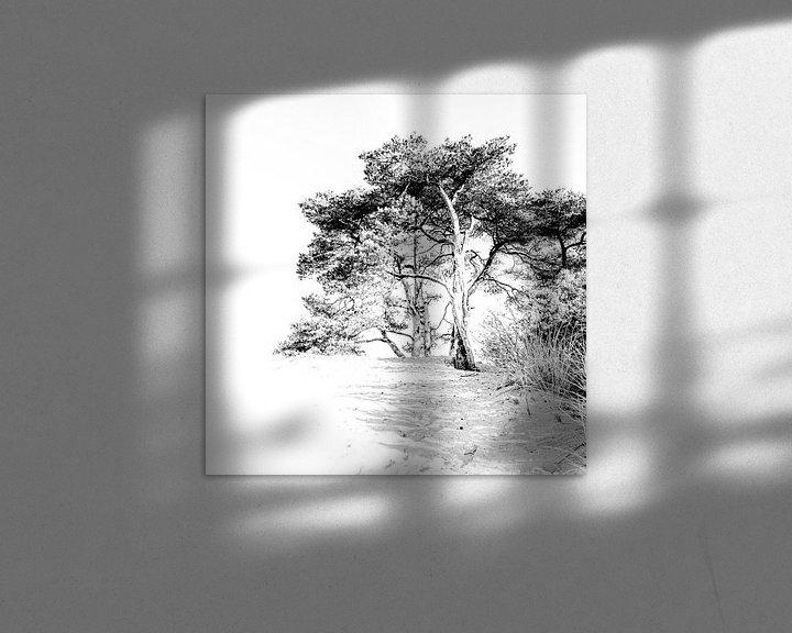 Sfeerimpressie: Kootwijkerzand highkey van Sandra Kuijpers