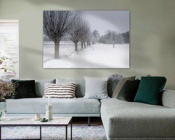 Paysage d'hiver néerlandais sur Eus Driessen
