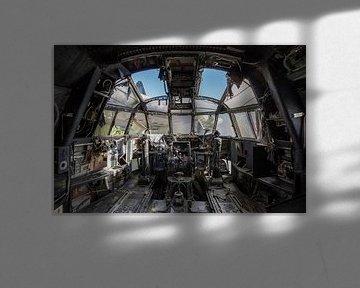 Lets Fly von Frans Nijland