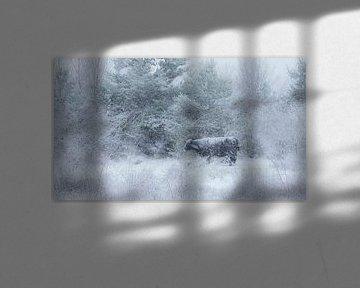 Sneeuwstorm van Huub Hugens