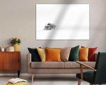 Lonely Tree van Ronald van Dijk