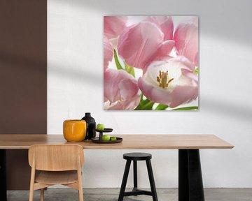 Tulpen macro van Herman Peters