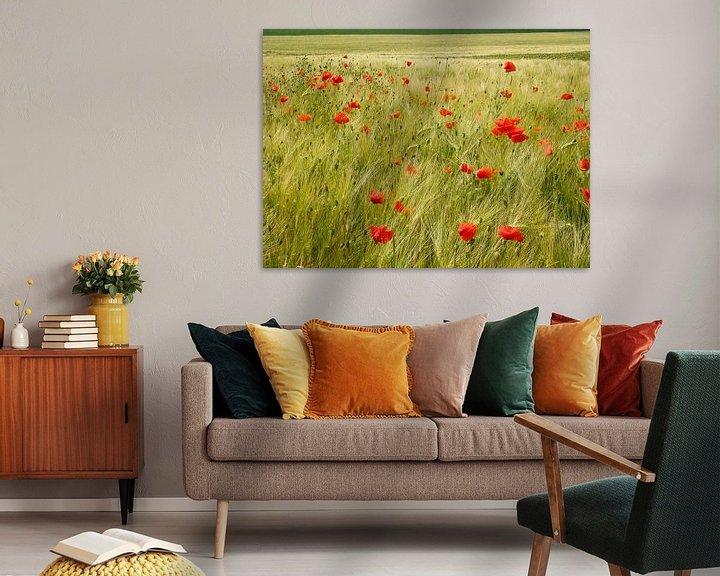 Sfeerimpressie: Poppies van Maarten De Wispelaere