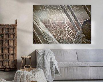 Tau und Spinnennetz auf dem Segelboot von Fotografiecor .nl