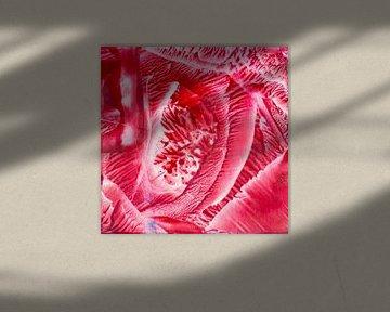 Encaustic Art rood wit  van Erica de Winter