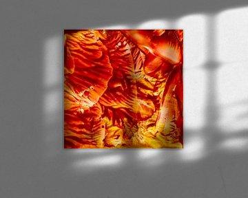 Encaustic Art rood oranje zwart geel van Erica de Winter
