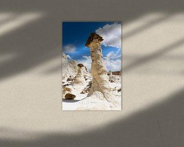 White Rock - Utah van Guido Reijmers