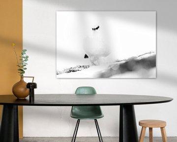 Spitsbergen Alpensneeuwhoen in de sneeuw von LTD photo