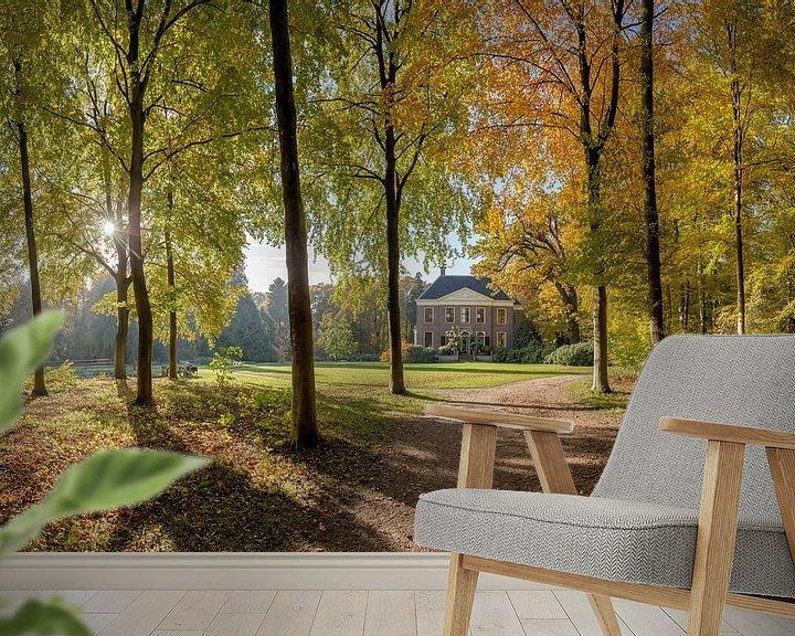 Sfeerimpressie behang: Boslaan in herfstkleuren, buitenplaats Land en Bosch, s-Graveland, , Noord-Holland, Nederland van Rene van der Meer