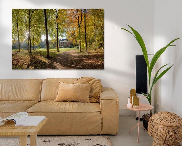 Sfeerimpressie: Boslaan in herfstkleuren, buitenplaats Land en Bosch, s-Graveland, , Noord-Holland, Nederland van Rene van der Meer