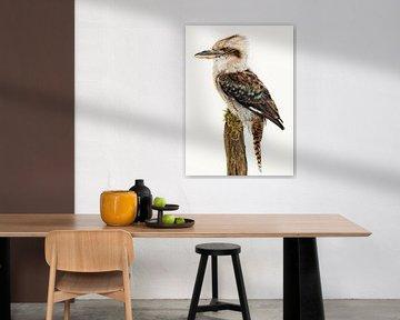 Rariteitenkabinet_Vogel_06 Kookaburra van Marielle Leenders