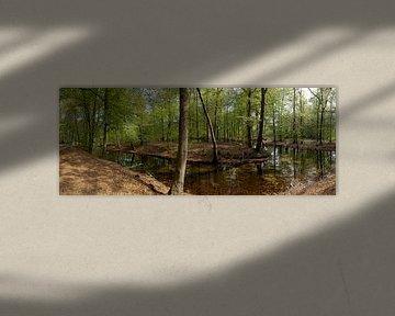 Bosgezicht met vijver in Spanderswoud in 's-Graveland von Martin Stevens