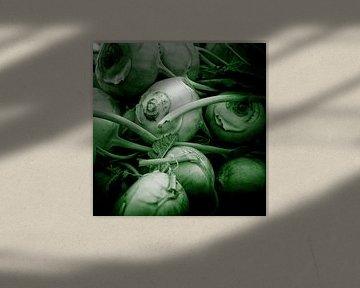 Groenteserie - Koolrabi van Wicher Bos