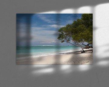 Gili Trawangan beach lombok 1 von Andre Jansen