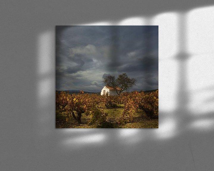 Sfeerimpressie: Spanje Landschap van Peter Bolman