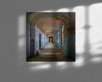 Een van de vervallen hallen van Beelitz von Truus Nijland